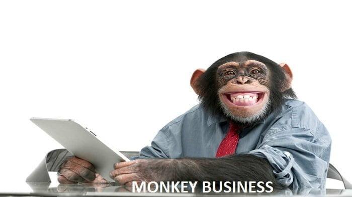 ilustrasi Monkey Business